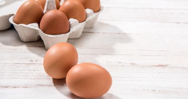 cuidados com os ovos